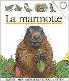 """Afficher """"La marmotte"""""""