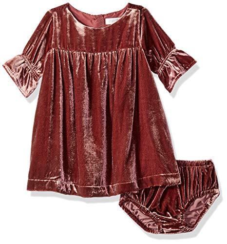 Velvet Girl Dress (Gymboree Baby Girls Bell Sleeve Dressy Woven Dress, Purple Violet Velvet, 6-12)