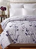 C&F Home Geneva Quilt, Blue Multi, Full/Queen