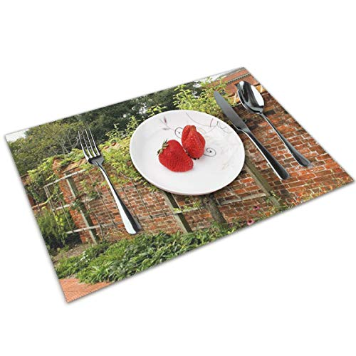 Espalier Fruit Tree Pruned-Placemats Set of 4 for Dining Table Washable Woven Vinyl Placemat Non-Slip Heat Resistant Kitchen Table Mats Easy to Clean.
