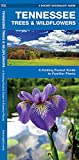 Tennessee Trees & Wildflowers: A Folding Pocket Guide to Familiar Species (A Pocket Naturalist Guide)