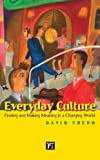 Everyday Culture: Finding and Making Meaning in a Changing World, David Trend, 1594514275