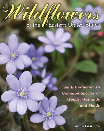 Wildflowers of the Eastern United States: An Introduction to Common Species of Woods, Wetlands and Fields PDF