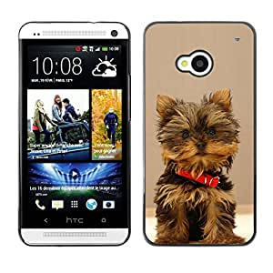 Vortex Accessory Carcasa Protectora Para HTC ONE ( M7 ) - Yorkshire Terrier Small Dog Puppy -