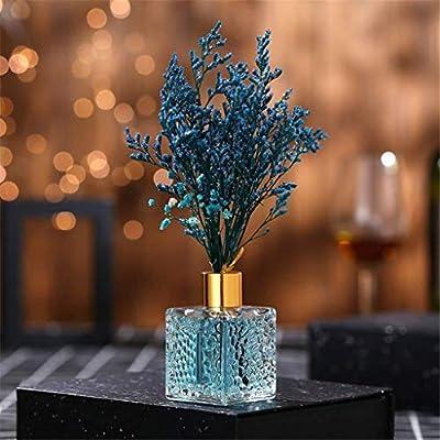 Ornament del Hogar Botella de vidrio difusor de aceite de lámina ...