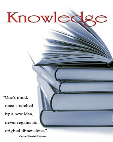 Knowledge Motivational Decorative Poster Print 16 by 20