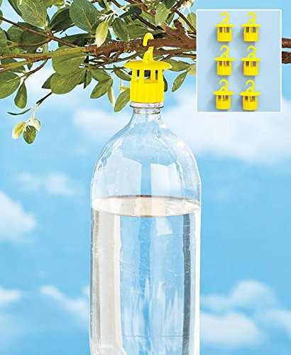 Set of 6 Bottle Yellow Wasps Insect Traps