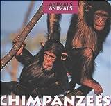 Chimpanzees, Daniel A. Greenberg, 0761411658