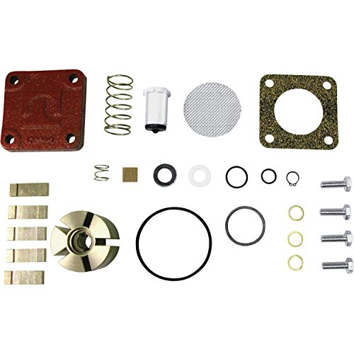 4200 Kit (Fill-Rite 4200KTF8739 Rebuild Kit for 600, 1200, 2400, 4200, and 4400 Series with Rotor Cover)