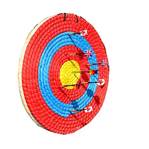 colored shooting targets - 7
