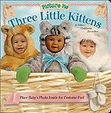 Picture Me Three Little Kittens, Deborah D'Andrea, Jennifer Thompson, 1571515496