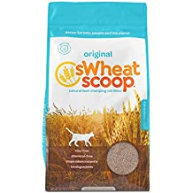 sWheat Scoop Fast-Clumping All-Natural Cat Litter, 25lb Bag