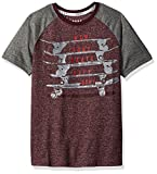 DKNY Little Boys' Skate Boards Short Sleeve Crew Neck T-Shirt, Port Royales, 6