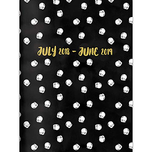 TF Publishing 19-4221A July 2018 - June 2019 Dots Monthly Planner, 7.5 x 10.25