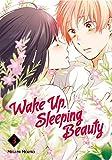 Wake Up, Sleeping Beauty Comics & Graphic Novels
