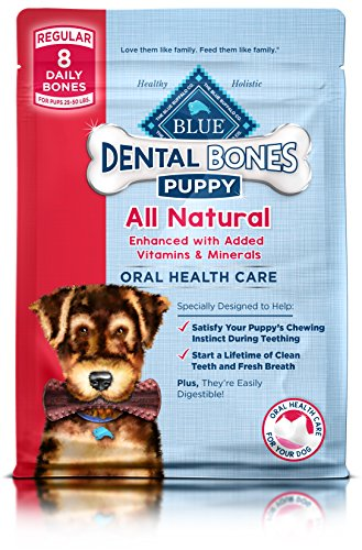 Chew Dog Ring (Blue Bones Puppy Regular Dental Chew Dog Treat 12-Oz)