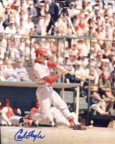 (Carl Taylor Autographed/ Original Signed 8x10 Color Photo Showing w/ the St. Louis Cardinals)