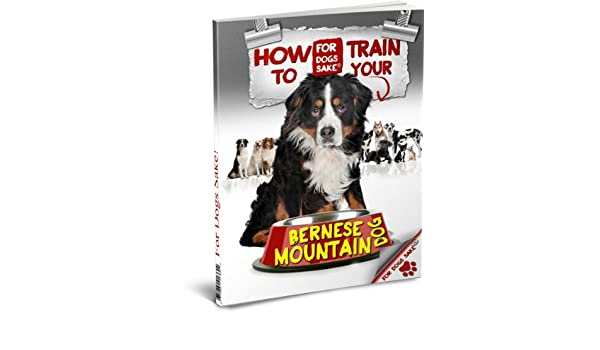 How To Train Your Bernese Mountain Dog Kindle Edition By