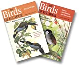 img - for The Birds of Ecuador (2 Vols.) by Ridgely, Robert S., Greenfield, Paul J. (2001) Paperback book / textbook / text book