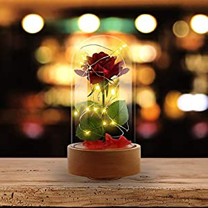 Ehugos Beauty & The Beast Pink Silk Rose and Led Light with Fallen Petals in a Glass Dome on a Wooden Base Gift for Valentine's Day Anniversary Birthday Wedding 2