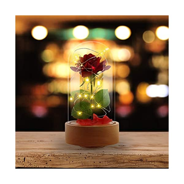 Ehugos-Beauty-The-Beast-Pink-Silk-Rose-and-Led-Light-with-Fallen-Petals-in-a-Glass-Dome-on-a-Wooden-Base-Gift-for-Valentines-Day-Anniversary-Birthday-Wedding