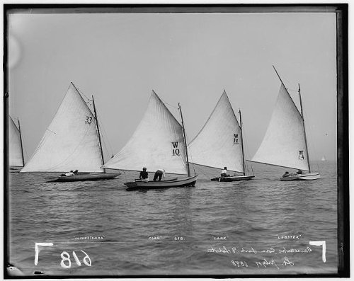Photo: Minnetonka,Cora,Lark,Lobster,regattas,sailing,ships,races,water ()