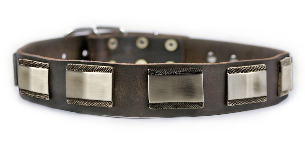 Dean and Tyler  WHITE LIGHT  Dog Collar Nickel Hardware Brown Size 41cm x 4cm Width. Fits neck size 14 Inches to 18 Inches.
