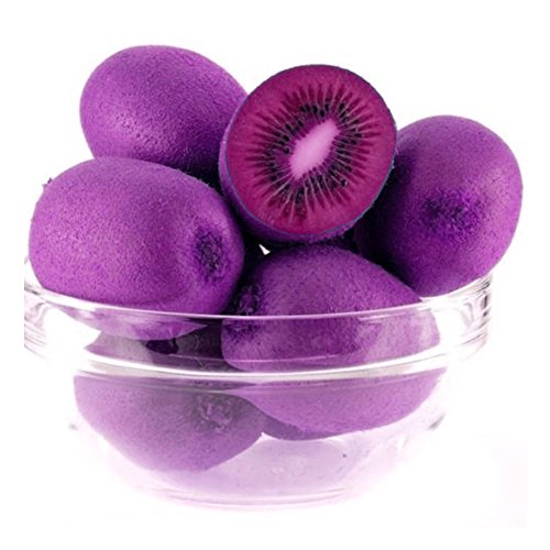 1000Pcs Garden Fruits Seeds, Purple Heart Kiwi Seeds Kiwifruit Tree Vegetable Seeds for Planting Bonsai by Ragdoll50