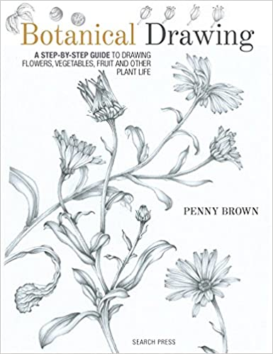 Botanical Drawing A Step By Step Guide To Drawing Flowers