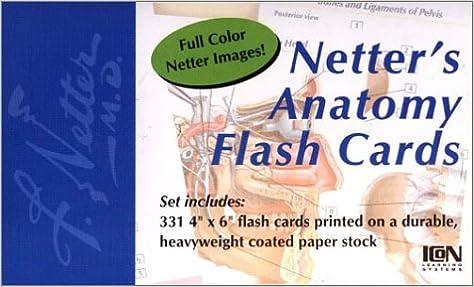 Netters Anatomy Flash Cards 9781929007080 Medicine Health Science Books Amazon