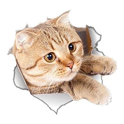 Da.Wa Creative Cat Stickers Wall Decoration Refrigerator Sticker Toilet Lid Sticker Home Decoration