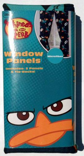 Disney Phineas and Ferb Window Panel 42 x 63 Curtains For Sale