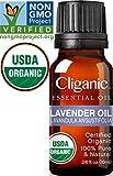 Cliganic USDA Organic Lavender Essential Oil - 100% Pure, Undiluted, Natural, Non-GMO (10ml), Therapeutic Grade for Aromatherapy Diffuser | Lavandula Angustifolia