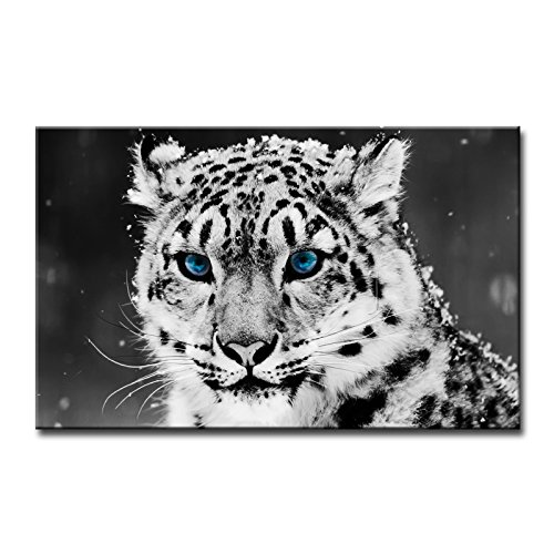 So Crazy Art Black And White Wall Art Painting Blue Eye Snow Leopard Prints On Canvas The Picture Animal Pictures Oil For Home Modern Decoration Print Decor ()