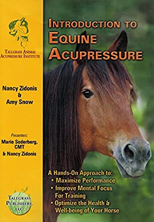 Amazon com: Introduction to Equine Acupressure - DVD by