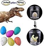 34pcs Dinosaur Eggs Collection - 24pcs Novelty Magic Large Size Crack Easter Dinosaur Eggs Hatching Toy plus 10 Small Toy Dinosaur Eggs