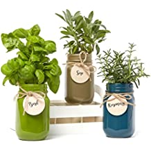 3-Pack Mason Jar 'Grow Your Own Herbs' Set by Modern Gourmet Foods | Contains Rosemary, Basil & Sage Seeds with Soil Pods