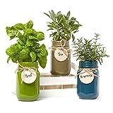 "Mason Jar ""Grow Your Own Herbs"" Set: Basil, Sage & Rosemary"