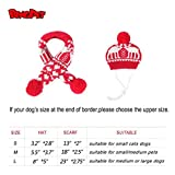 BINGPET Pet Costume Accessories Knit Christmas Reindeer Scarf and Hat Set for Pet from Small to Large