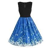 HHei_K Womens Christmas Plus Size Vintage Rainbow Print Patchwork Sleeveless V-Neck Lace Trim Party Swing Dress
