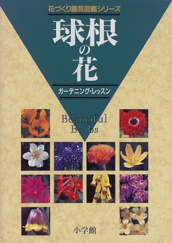 Bulb flowers - Gardening & lessons (flower making gardening picture book series) (1998) ISBN: 4093053235 [Japanese Import]