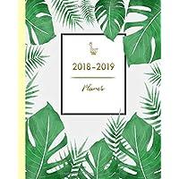 Planer 2018-2019: Wochenplaner mit trendigem Palmen-Design, von August 2018 bis Juli 2019, 20 x 25 cm, 2 Seiten pro Woche