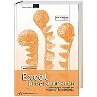 Excel programmieren. Anwendungen erstellen mit Visual Basic für Applikationen