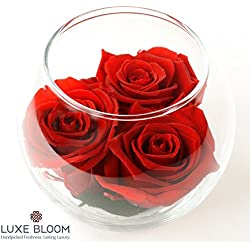 "Luxe Bloom | Crimson Preserved Roses last 60 days | Perfect for Valentine's Gifts. Share the long lasting love by Luxe Bloom| 3 crimson roses & greens in a 4"" glass bubble"