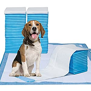 Puppy Pads, 34″ x 28″ XXL-Large, Ultra Absorbent – All Day Premium Dog Pads – 42 Count by Petphabet