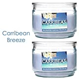 Hosley Set of 2 Caribbean Breeze Highly Scented, 2 Wick, 10 Oz wax, Jar Candle. Ideal votive GIFT for party favor, weddings, Spa, Reiki, Meditation, Bathroom settings
