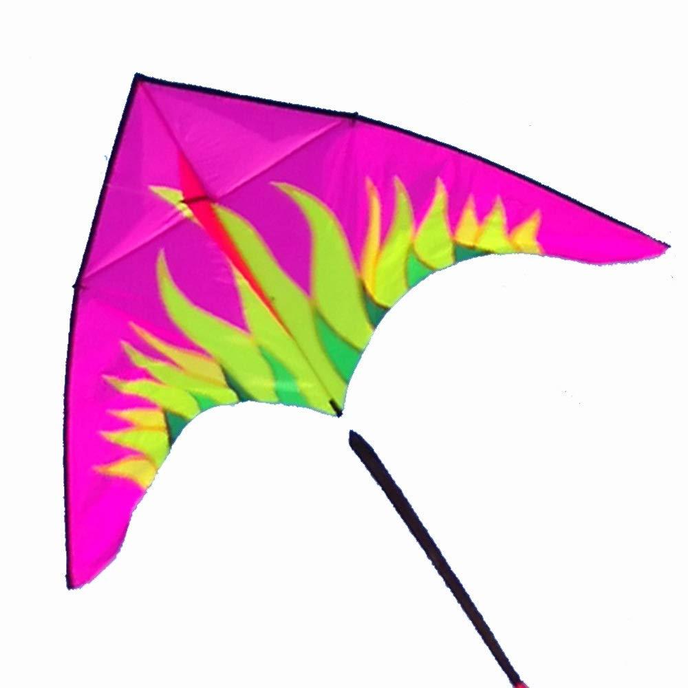 凧,春の空飛ぶ凧の希望 オーロラ カイト 大きい 大人 ピンク 大人 傘布 空飛ぶ物 ロングテール 三角形 空飛ぶ物 (色 : 青) B07QN68RGV ピンク ピンク, 工房 おべべや:79f88b42 --- ferraridentalclinic.com.lb