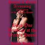Bondage at the Witch's House: Hansel and Gretel Arousing, Book 11 | Melanie Moorhac