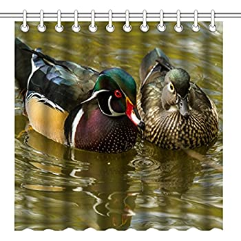 Amazon.com: Duck Approach Shower Curtain: Home & Kitchen
