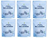 Amphora Organic Soft Dried White Mulberries 4 Ounce (Pack of 6)